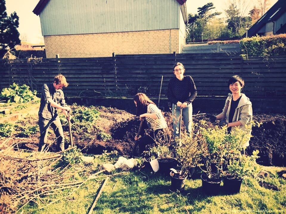 Folk High School Gardening in Denmark at International People's College