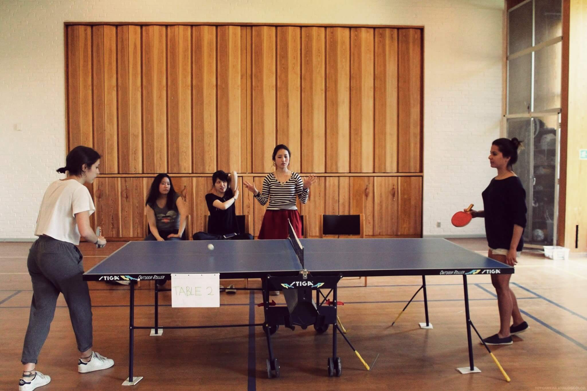 Folk High School Ping pong tournament at International People's College in Denmark