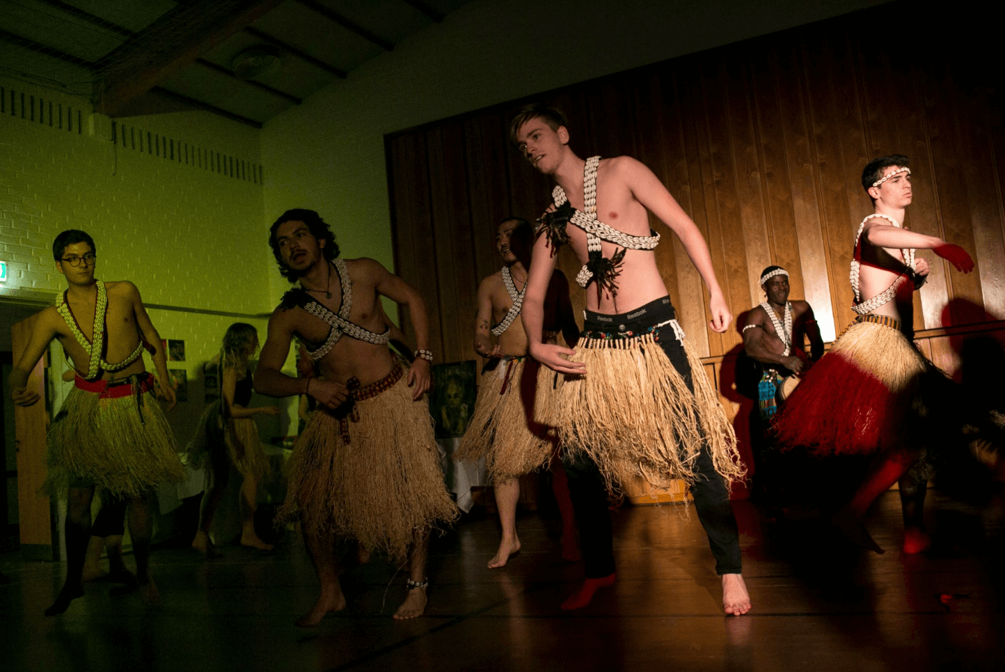 Folk High School African Drum and Dance at International People's Collge in Denmark