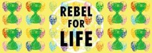 Rebel for life at folk high school